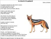 fablep5_chacalguepard.jpg